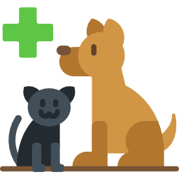 dog and cat veterinary