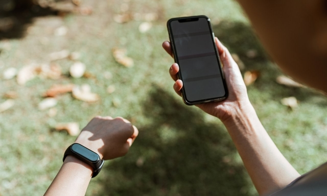 Role 4- Wearables App Developers
